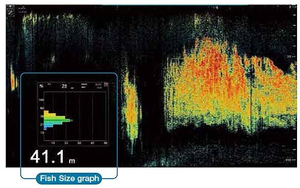 Fcv 2100 Fish Size Graph
